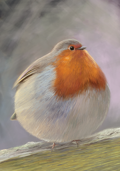 http://phillustrator.co.uk/files/gimgs/28_robin.png